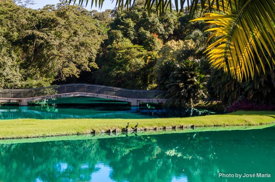 Lago de Inhotim