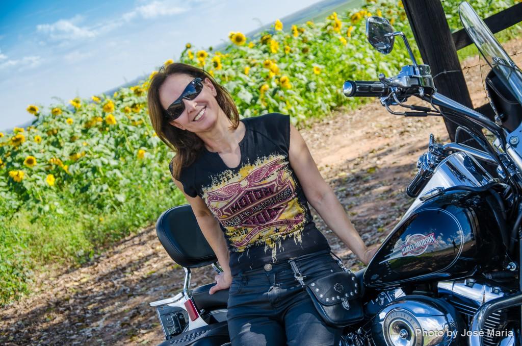 No campo de Girassóis de Harley